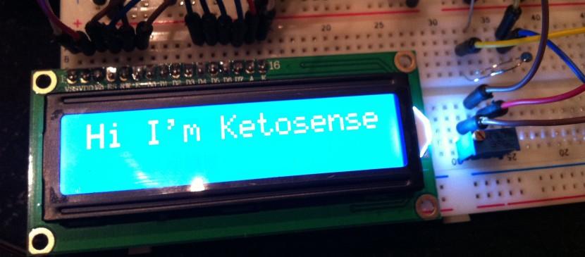 Im_ketosense